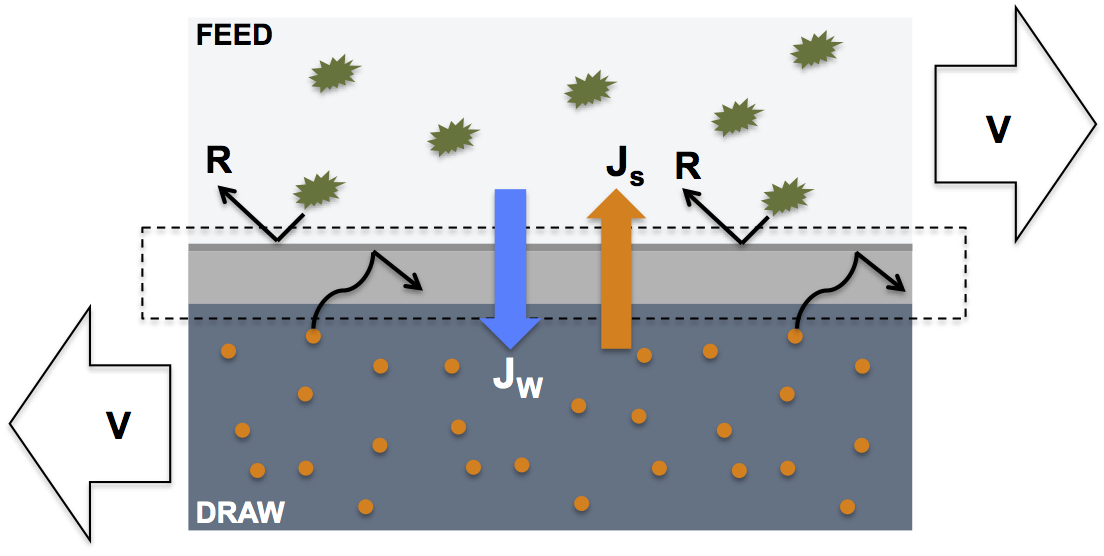 schematic diagram of a forward osmosis membrane in action