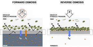 Forward osmosis vs reverse osmosis