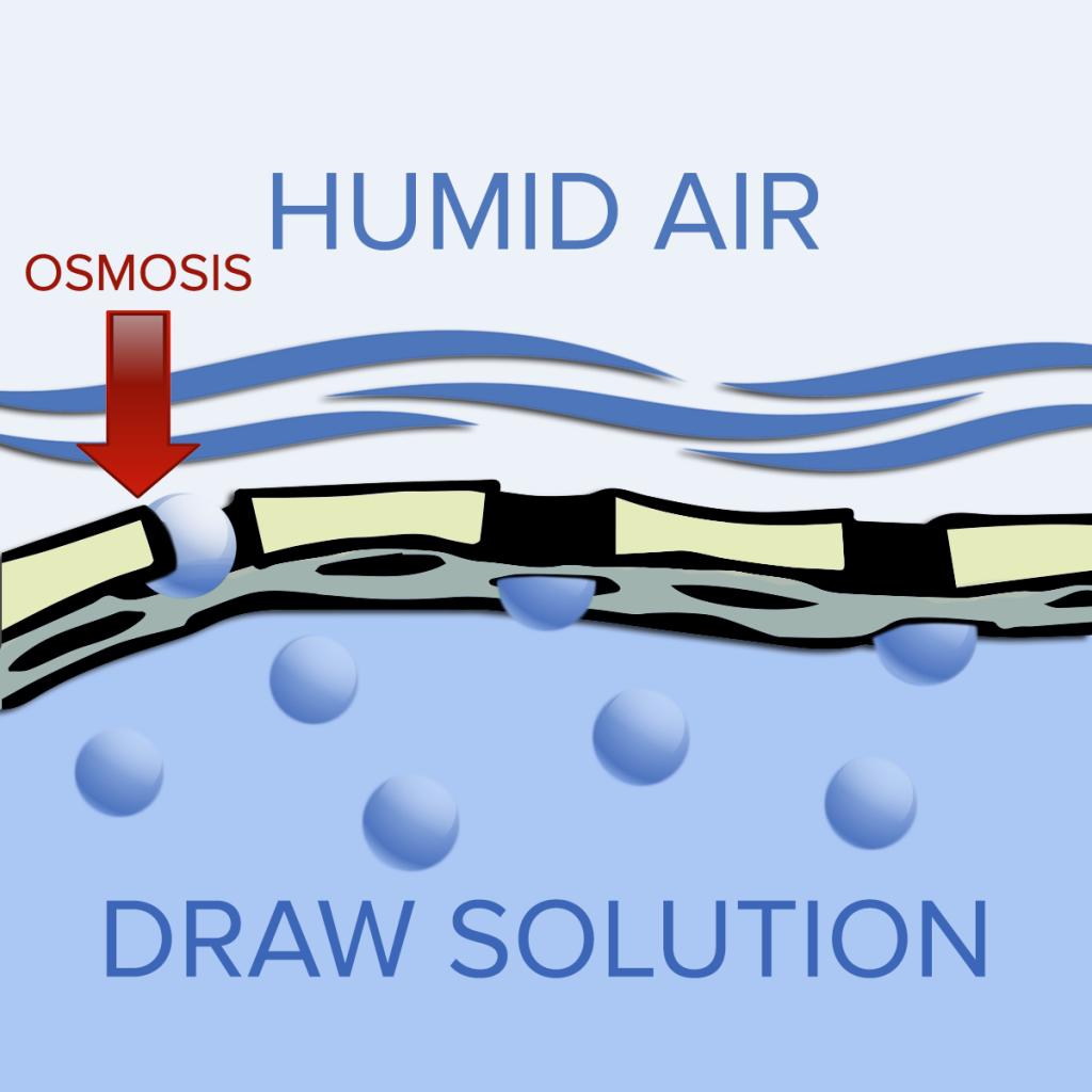 osmotic dehumidification