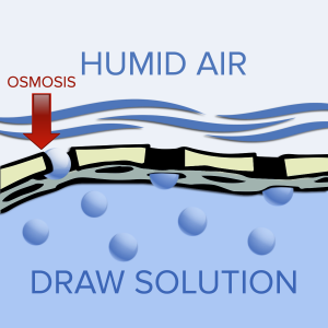 osmotic dehumidification